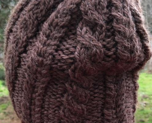 snowy plover hat
